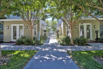 Catalina Luxury Apartments Outdoor Courtyard