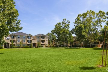Forge Homestead Apartments Outdoor Lawn