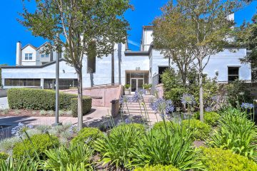 Stevens Creek Villas Landscaping
