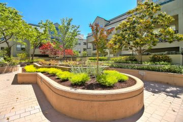 The Podium Apartments Outdoor Walkway and Landscaping