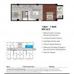 Apartment 207 Floor plan