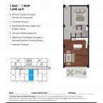 Apartment 303 Floor plan